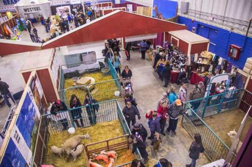 Royal Petting Zoo at Royal Manitoba Winter Fair in Brandon