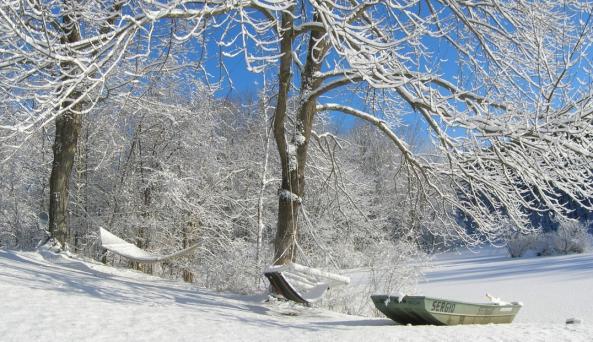 Hudson Valley Cabin - winter view