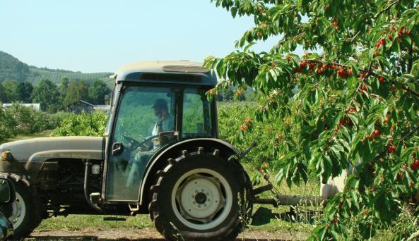 tractor at Baker farm.jpg