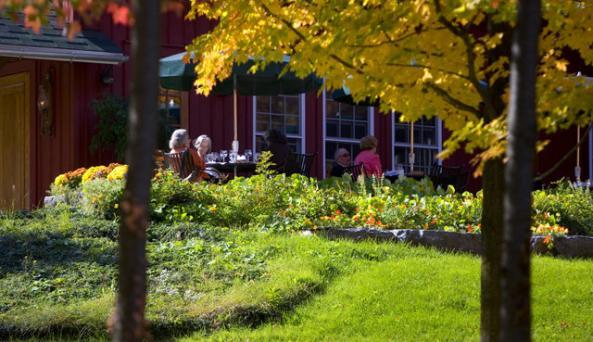 Elderberry Pond Auburn NY.jpg