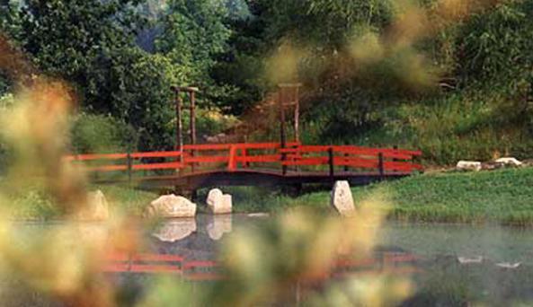 Nannen Arboretum-bridge_to_heaven.jpg