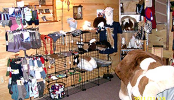 Alpaca fiber products