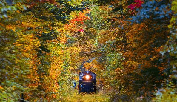 Catskill Mountain Railroad - Fall - Mt Tremper - Photo by Beautiful Destinations
