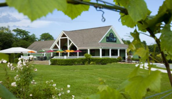 Macari Vineyards and Winery Cutchogue
