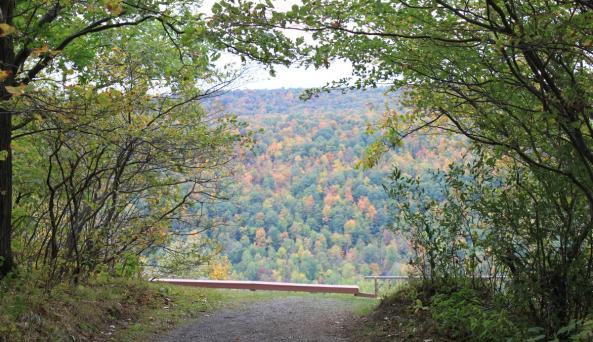 Trail leading to an overlook at Ontario County Park