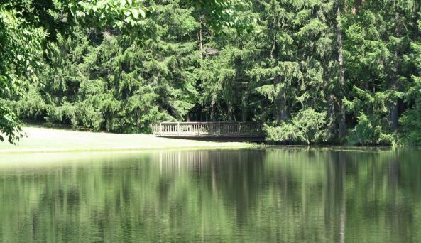 Pine Lake Manor