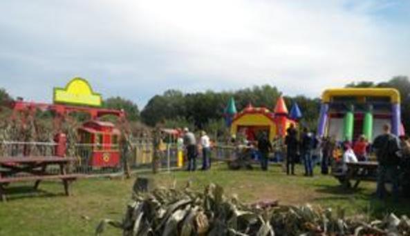 Fall Fest 1