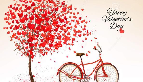 Valentine's Day Bike Love
