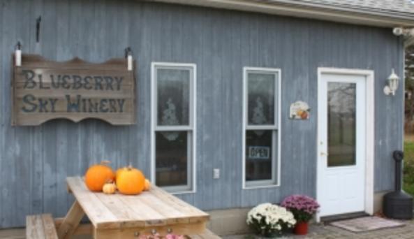 Blueberry Sky Farm Winery