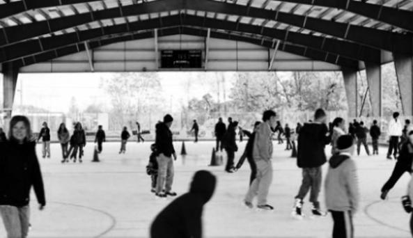 The Healthy Zone Rink