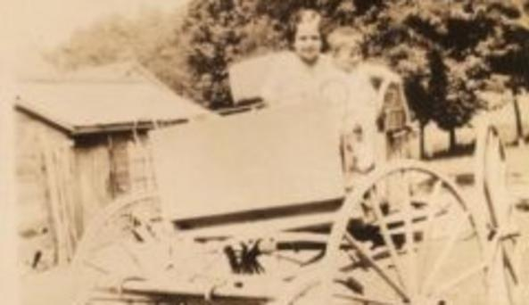 Historic Apple Orchard