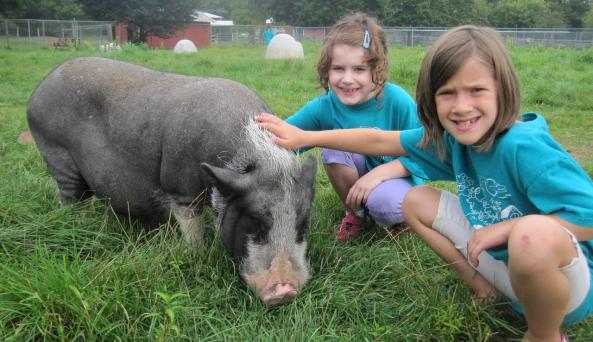 Kids with animals at Lollypop Farm