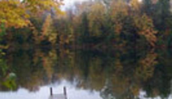 Goudy Pond Wilderness Cabin RentalsPond