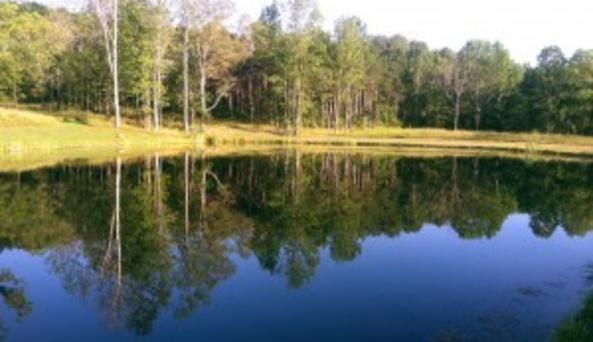 Finger Lakes Preserve