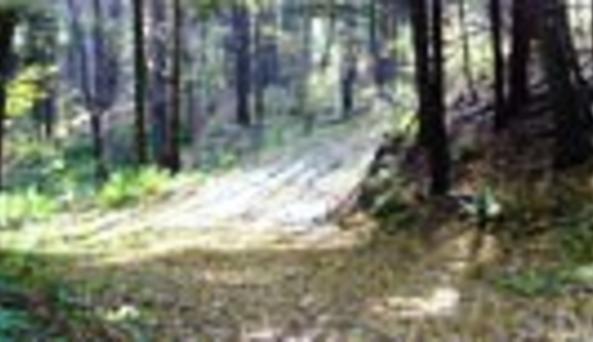 Goudy Pond Wilderness Cabin RentalsRoad