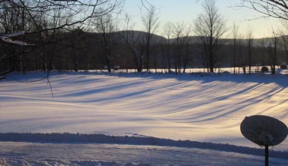 winterfield_harmony.jpg