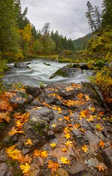 Blue River in Fall by David Putzier