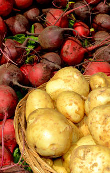 Farmers market beets and potatoes