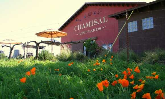 Chamisal_Vineyards_1_201210.jpg