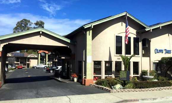 Olive Tree Inn & Suites