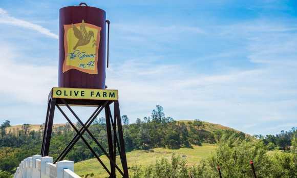 deco water tower.jpg