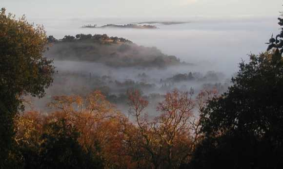 The hills of Atascadero in the fall - foggy day - by Gary Smith.jpg