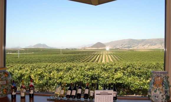 edna_valley_vineyard_tasting_room_view_big.jpg