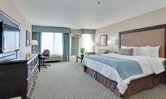 One Room King Suite.jpg