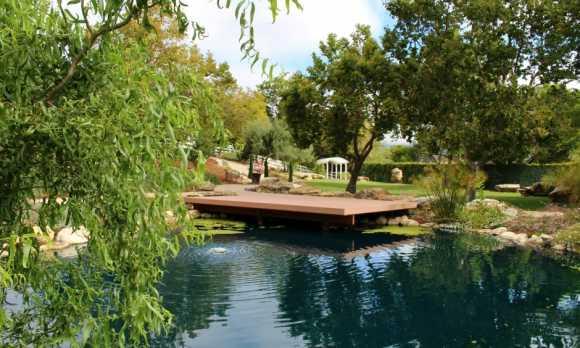 Secret Garden Pond_half.jpg