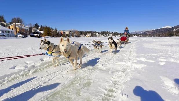 Dog Sledding on Mirror Lake