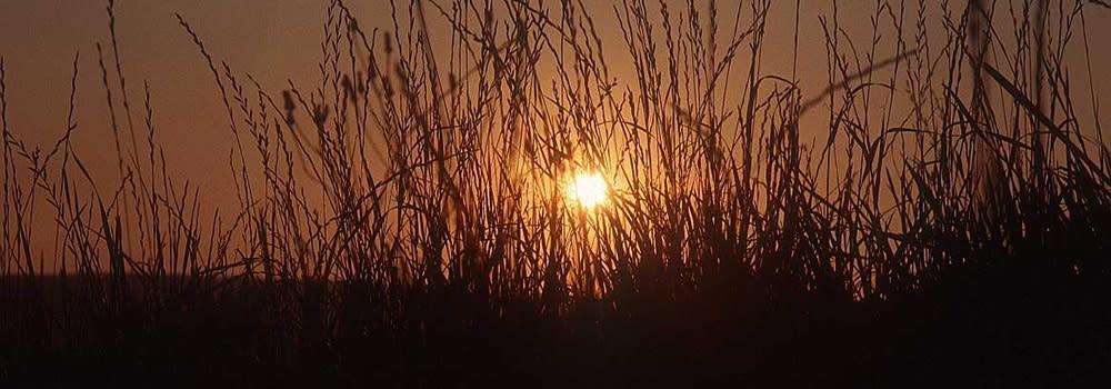 Meta County Park at Sunset