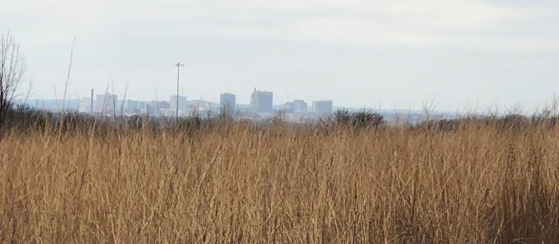 Topeka Skyline from Iliff Commons