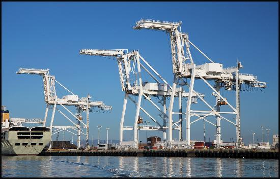 cranes-by-the-port-of