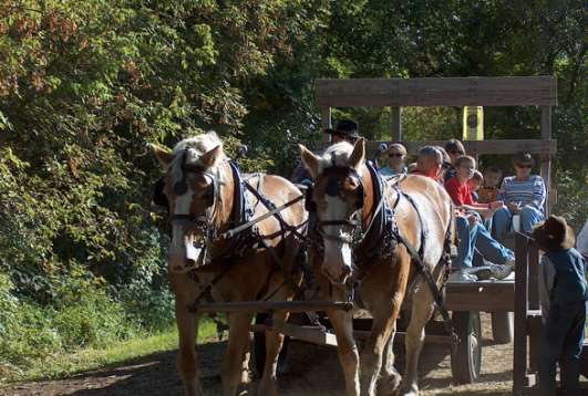 Buckley Homestead County Park A Living History Farm