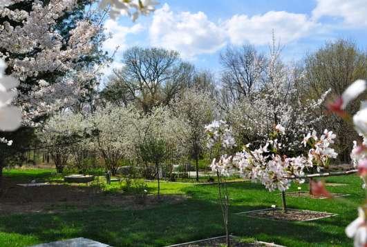 Gabis Arboretum at Purdue Northwest (formerly Taltree)