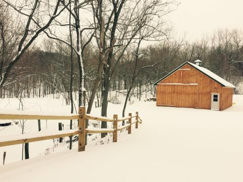 Maple season at Kettleridge Farm in Rochester, NY