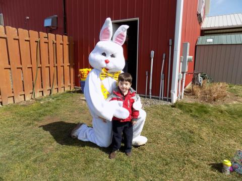 Meet the Spring Bunny at Wickham Farms in Rochester, NY