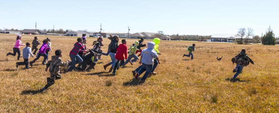 Kids Chasing Chicken | Iowa Chicken Run