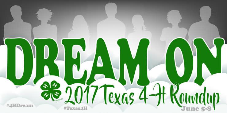 Texas 4H Roundup