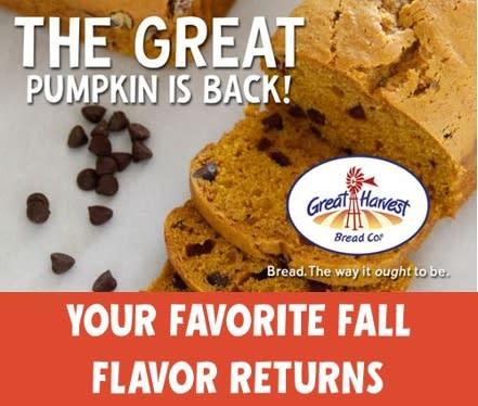 Great Harvest pumpkin