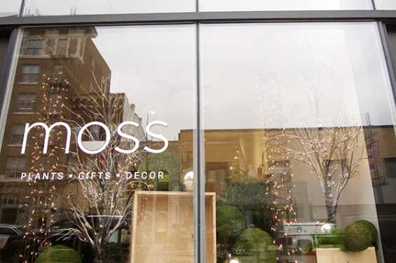 Moss Store Front