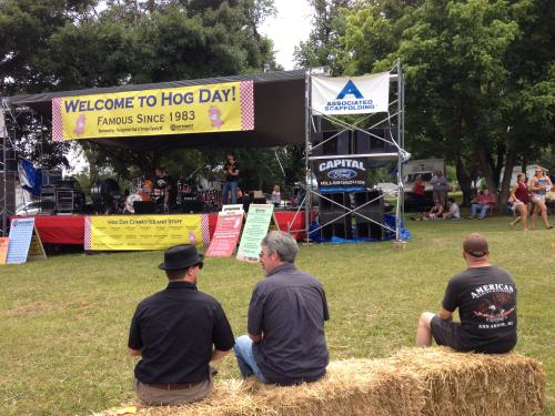 Live Music Hog Day 2014