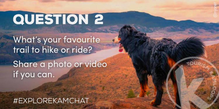 Chat 1 - Q2