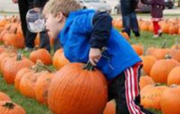 Oak Bank 17th Annual Great Pumpkin Give Away