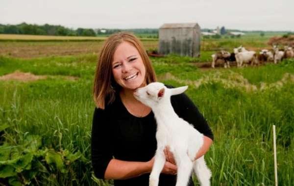 Taste Traditions of Wisconsin: Wisconsin Women in Cheesemaking
