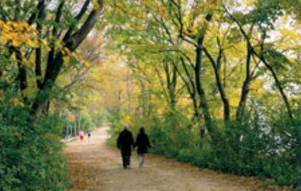 UW-Madison Arboretum Walk: A Prairie Birthday.