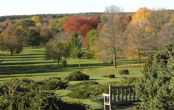 UW-Madison Arboretum Walk: Greene Prairie and Grady Knolls.