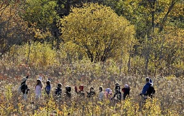 UW-Madison Arboretum Garden Tour: Medicinal Plants.
