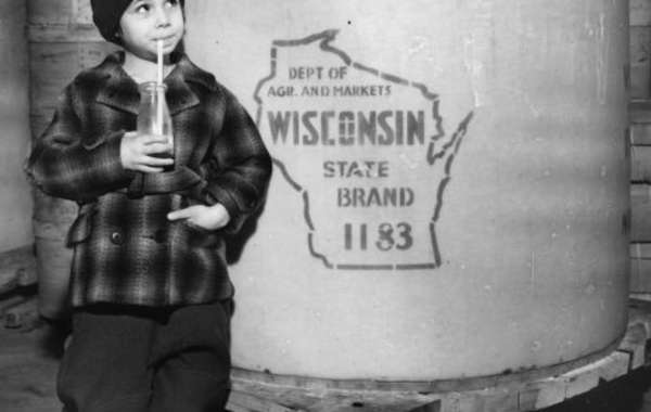 The Flavor of Wisconsin for Kids