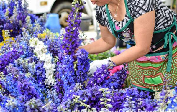 Dane County Farmers' Market Walking and Tasting Tour